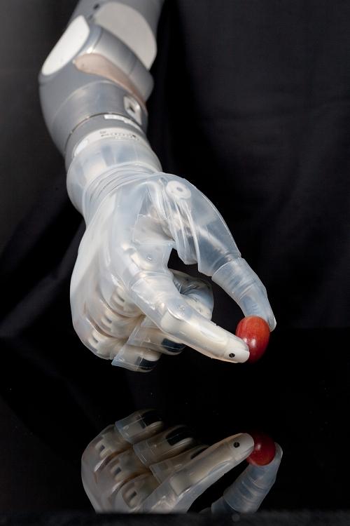 prostheticswebfeature_500x750